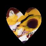 Heartflow #8